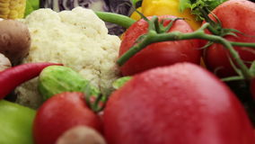 Close up dos vegetais video estoque