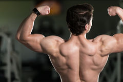 Close Up Double Biceps Pose royalty free stock photos