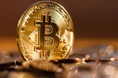 Close-up dourado de Bitcoin, brilha no sol, ele é valioso foto de stock