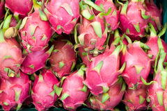 Close up dragon fruit Royalty Free Stock Photo