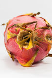 Close-up Dragon fruit Royalty Free Stock Images