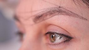 Close-up of a drawn eyebrow on points. Preparing for permanent makeup. Beauty Studio. 4K Slow Mo. Close-up of a drawn eyebrow on points. Preparing for permanent stock video