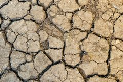 Close up dried soil in nature. Close up dried and barren soil in nature stock images