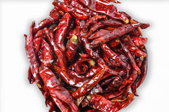 Close up of dried chili pepper , food ingredient ,on white backg Royalty Free Stock Images