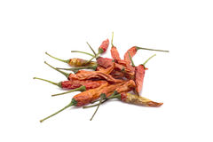 Close up of dried chili on white background Stock Photography