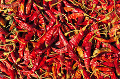 Close up of dried chilli Stock Photos
