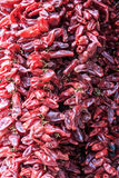 Close up of dried chilli Stock Image