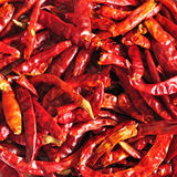 Close up of dried chilli, Thai food ingredient Royalty Free Stock Photos