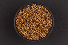 Close up of dried coriander seeds Royalty Free Stock Photo