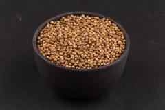 Close up of dried coriander seeds Stock Photos