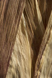 Close-up of dried corn husks. Royalty Free Stock Image