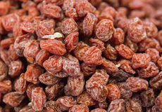 Close up Dried cranberries, Background and texture. Close up of Dried cranberries Stock Images