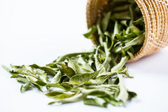 Close up Dried curry leaves Royalty Free Stock Image
