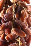 Close-up Dried dates (Phoenix dactylifera l) Royalty Free Stock Photography