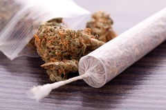 Close up of dried marijuana leaves and joint. Close up of dried marijuana leaves and tied end of marijuana joint with translucent rolling paper on white royalty free stock photos