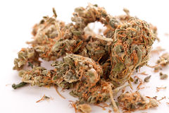 Close up Dried Marijuana Leaves on the Table. Close up Dried Cannabis or Marijuana Leaves Used for Psychoactive Drug or Medicine on Top of the Table Royalty Free Stock Photos