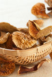 Close up of dried  mushrooms Stock Photo