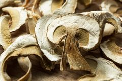 Close up, dried mushrooms, on a wooden table royalty free stock photos
