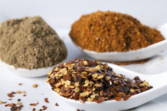 Close up of dried red chilli flakes with other spices in white spoon Stock Image
