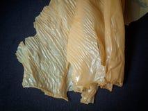 Close up Dried Tofu Skin. Stock Photo