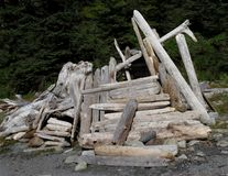 Close-up of a driftwood shelter. stock photos