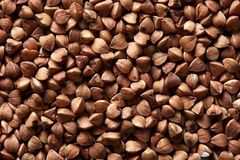 Dry buckwheat background stock photography