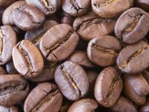 Close-up dry coffee beans. unmilled turkish coffee beans royalty free stock images