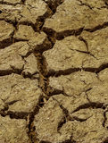 Close up dry cracked soil dirt  during drought Stock Photography