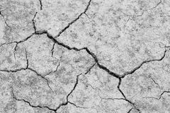 Close-up of dry dracked soil ground Royalty Free Stock Photos