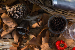 Close up of dry leaf by spices. On table Royalty Free Stock Photography