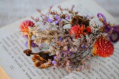Close up dry posy flowers. Close up of dry posy on a old book Royalty Free Stock Image