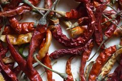 Close up of dry red chillies. royalty free stock image