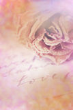 Close up of dry rose and Love word written on card. Lens flare a Royalty Free Stock Image