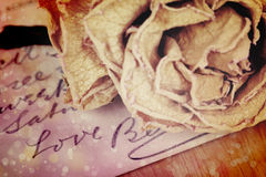 Close up of dry rose and Love word written on card. Stock Photos