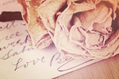 Close up of dry rose and Love word written on card. Soft light. Stock Images