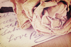 Close up of dry rose and Love word written on card. Soft light. Stock Image