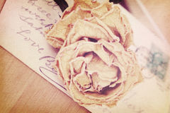 Close up of dry rose and old postcard. Soft light vintage style. Stock Photos
