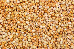 Close up dry yellow split peas background.  royalty free stock images