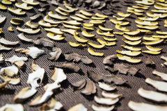 Close up of drying cut mushrooms on net dryer background. Heap of natural dried sliced boletus mushrooms for suop Royalty Free Stock Photos