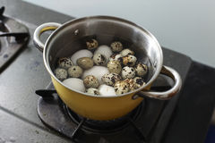 close up duck egg and quail eggs on white Background Stock Image