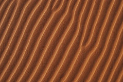 Close Up Dune Ripples Stock Images