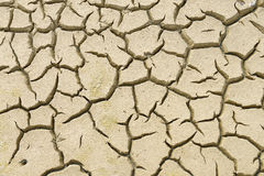Close-up of earth cracked. Because of drought Stock Image