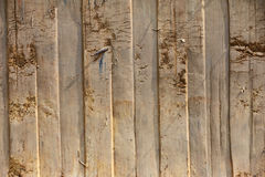 Close up of Earth pattern, vertical lines Stock Image
