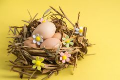 Close up. Easter card. Rustic eggs in a bird`s nest of straw. The decor of the felt flowers. Yellow background. Copy space. Close up. Easter card. Rustic brown stock photos