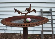 Close-up of Eggs hidden for Easter egg hunt in bird bath in backyard. royalty free stock photography