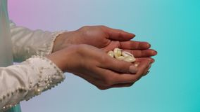 Close up for eastern young woman hands giving many small seashells to man hands, barter concept. Stock. Eastern woman in royalty free stock photography