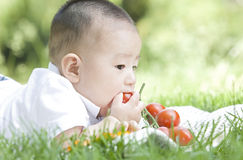 Close -up of an eating baby. An Asian baby on grass is eating tomato Royalty Free Stock Photos