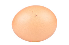 Close up of an egg. Over a white background Royalty Free Stock Images