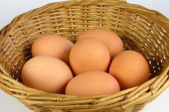 Close up egg basket. Close up of eggs in basket Stock Images