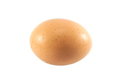 Close up an egg Stock Photo